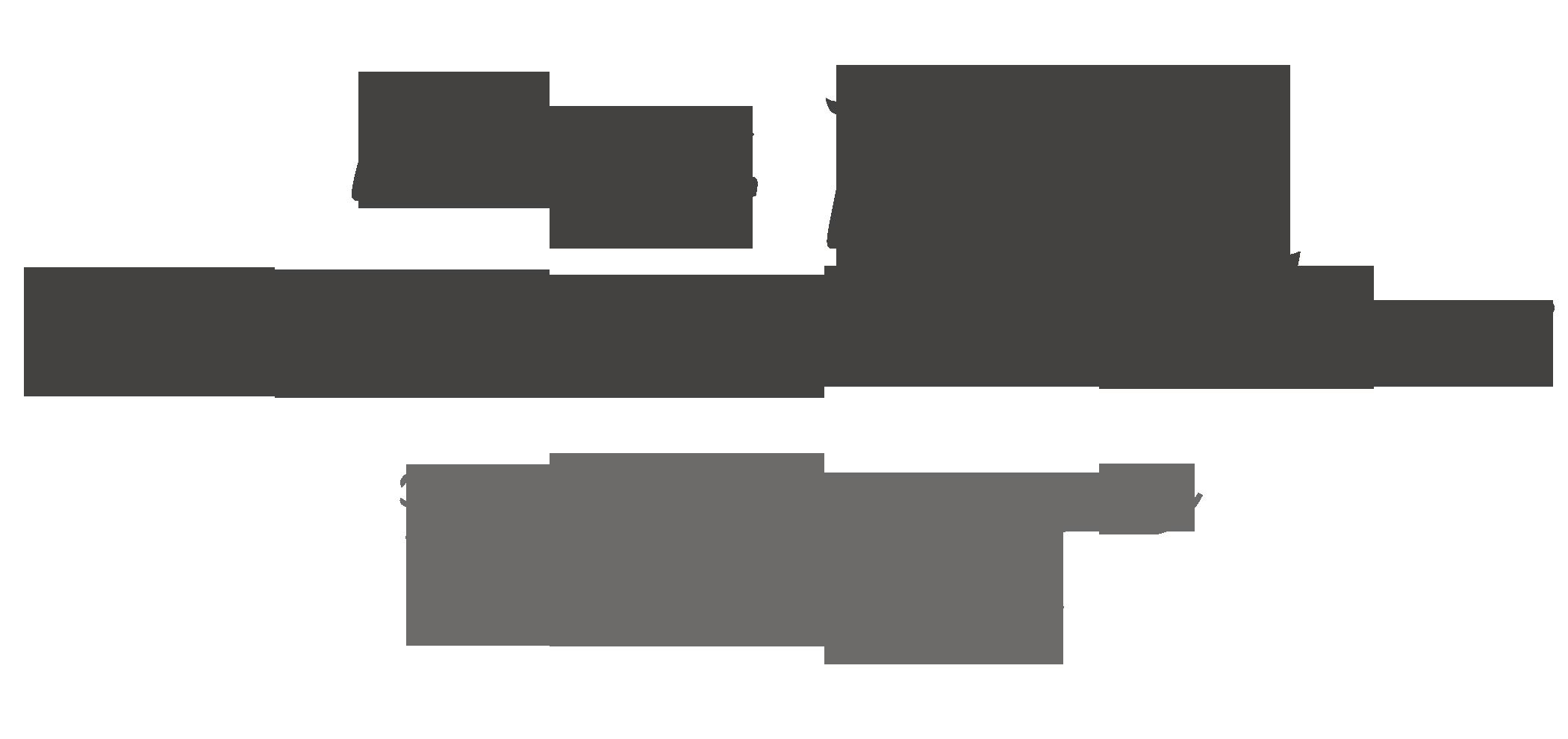 Mag. Iris Süssenbacher Logo